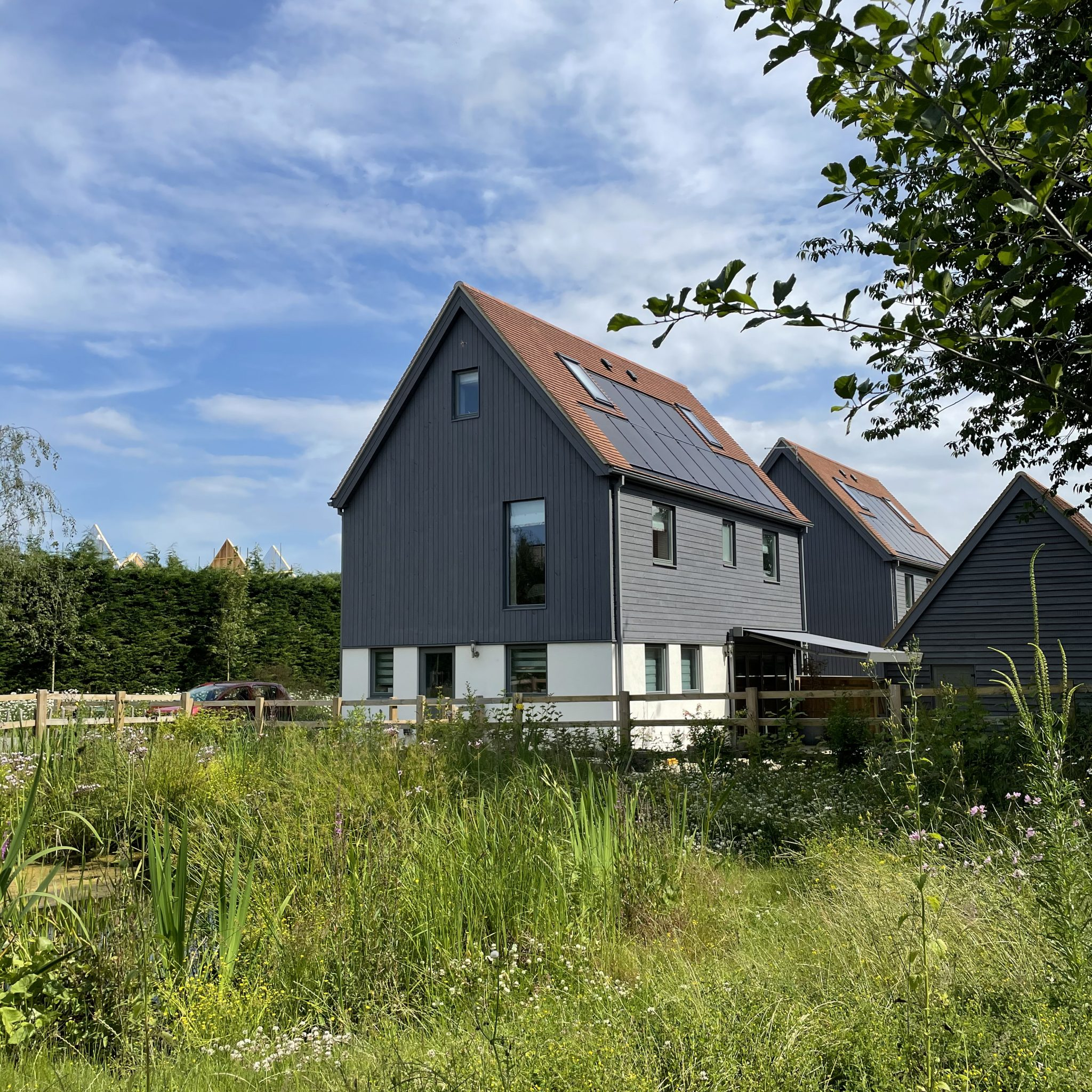 New net zero and low energy housing case studies published